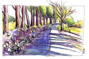 Eguilles chemin cypres crayon aquarellable