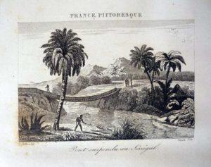 gravure france pittoresque palmier homme
