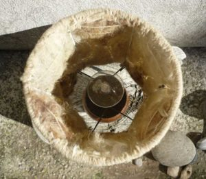 Pieds lampe en bois détail dessus ampoule